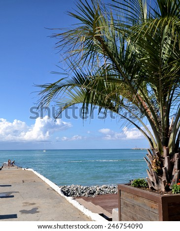 View of the beach in the Sochi, Russia - stock photo