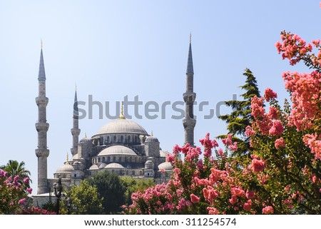 View of the Blue Mosque Sultanahmet Camii in Istanbul, Turkey - stock photo