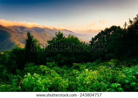 View of the Blue RIdge at sunrise, seen from Mt. Mitchell Overlook on the Blue Ridge Parkway in North Carolina.