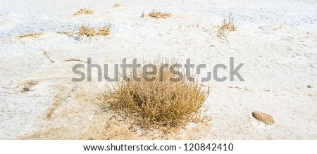 View of the coast if the Dead Sea, Israel, the deepest hypersaline lake in the world. With 33.7% salinity, - stock photo
