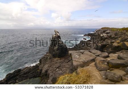 View of the coast Isle Santa Fe, Galapagos Island - stock photo