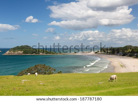 View of the coastline and town of Tauranga from the Mount in New Zealand - stock photo