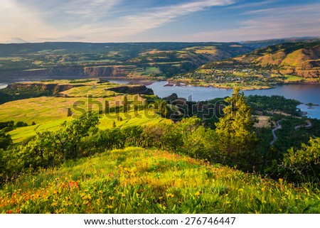 View of the Columbia River from Tom McCall Nature Preserve, Columbia River Gorge, Oregon.