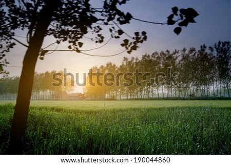 view of the countryside at dusk - stock photo