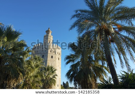 view of the famous Gold Tower, Seville, Andalucia, Spain