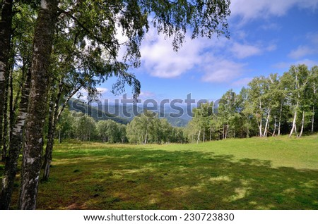 View of the fields and forests around the mountain Mandzherok. Russia, Altai Republic - stock photo