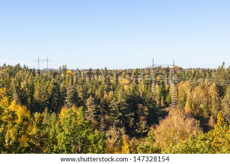 View of the forest in autumn - stock photo