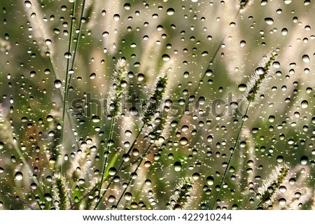 View of the grass through the window glass covered by raindrops - stock photo