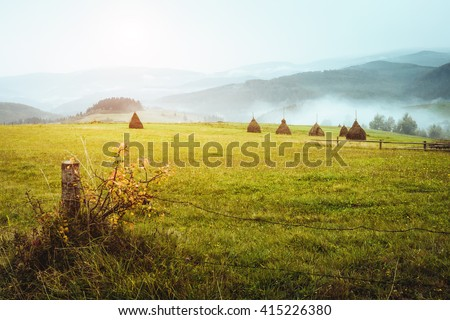 View of the green hills which glowing by sunlight. Dramatic scene and picturesque picture. Location place Carpathian, Ukraine, Europe. Beauty world. Soft filter, vintage style. Instagram toning effect - stock photo