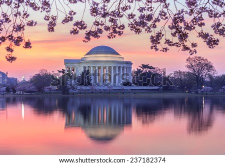 View of the Jefferson Memorial illuminated in the pre-dawn hour and reflecting in the Tidal Basin in Washington, DC during the cherry blossom bloom in spring. - stock photo