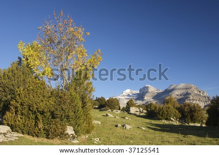 View of the massif of Monte Perdido in Ordesa National Park; Spain