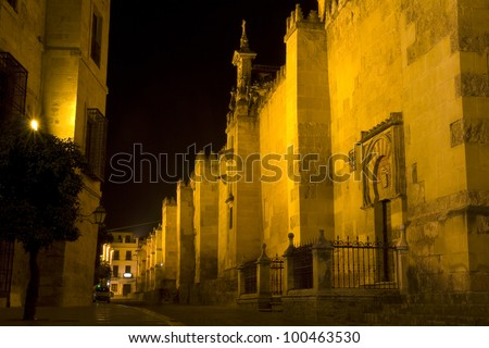"View of the Mezquita of Cordoba at night. The mezquita, or now ""Cordoba Cathedral"", was once the second largest mosque in the world. - stock photo"