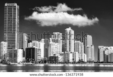 View of the Miami Skyline with offices and Apartments in black and white