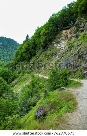 view of the mountains and forests of Abkhazia