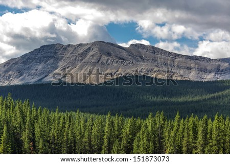 View of the mountains and wilds of Alberta, Canada.