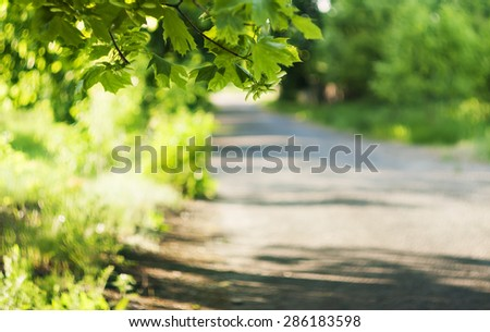 view of the old road, green field and bright green trees, rural landscape - stock photo