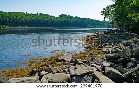 View of the Passagassawakeag River as it flows into its estuary in Belfast Maine with coastline in the foreground. - stock photo