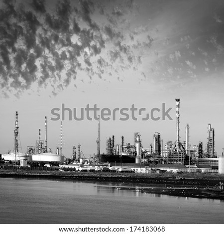 View of the plant by the sea. Venice, Italy. - stock photo