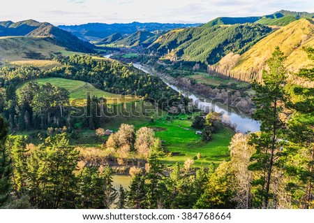 View of the river and the surrounding forest in the Whanganui National Park, North Island of New Zealand - stock photo