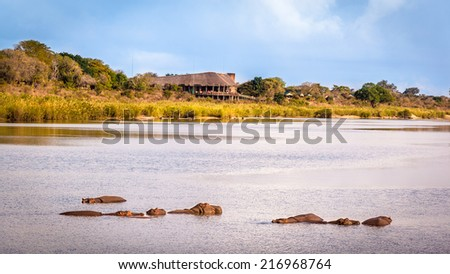 View of the Sabie Sand River with hippos and the Lower Sabie Rest Camp, Kruger National Park, South Africa - stock photo
