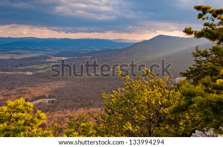 View of the Shenandoah Valley and Appalachian Mountain through pine trees before sunset, from Massanutten Mountain in George Washington National Forest, Virginia - stock photo