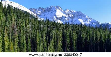 view of the snow covered mountains in the back of green conifer forest