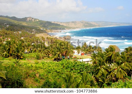 View of the surfer beach  Bathsheba, Barbados, Caribbean