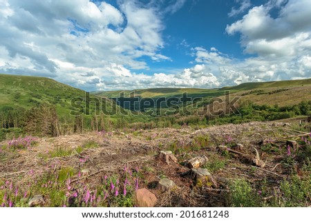View of the valley in the  Brecon Beacons National Park, Wales. - stock photo