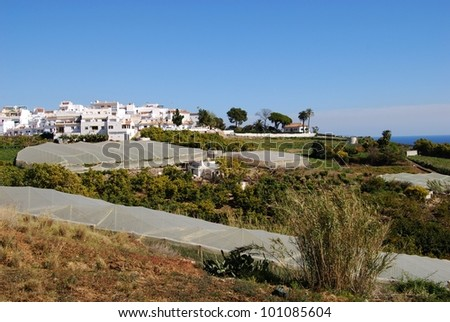 View of the village with crops growing under poly-tunnels in the foreground, Maro, Costa del Sol, Malaga Province, Andalusia, Spain, Western Europe. - stock photo