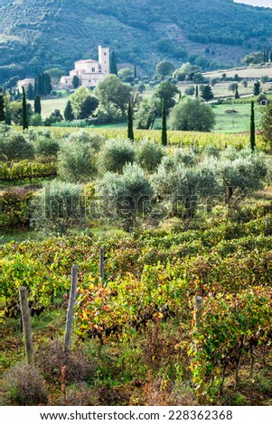 View of the vineyards and monastery in Tuscany - stock photo