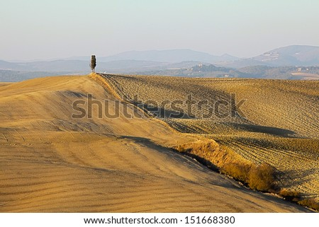 view of the wavy hills of Siena, the Crete, Tuscany - stock photo