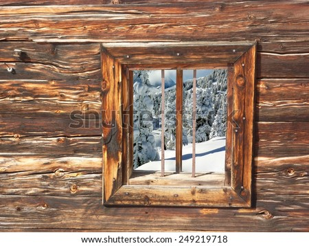 View of the winter forest with a wooden windows - stock photo