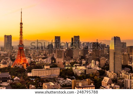 View of Tokyo Skyline Tokyo, Japan. - stock photo