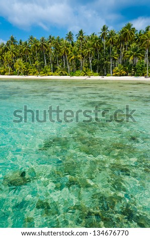 View of tropical beach with transparent water on foreground, vertical - stock photo