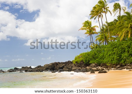 View of Turtle Bay in a summer day - stock photo