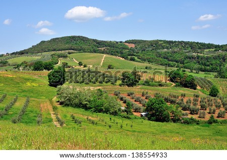 View of Tuscan hills from Montalcino city wall.