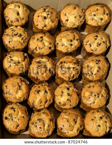 View of twenty muffins with chocolate chips in a cardboard box - stock photo