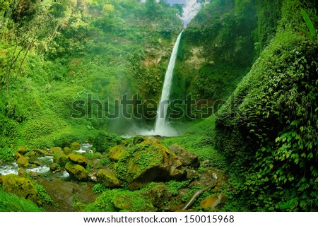 View of waterfall and greenish forest landscape. Taken at Rainbow Waterfall a.k.a. Coban Pelangi, Malang, east Java, Indonesia - stock photo