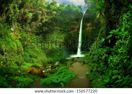View of waterfall and greenish forest landscape Taken at Rainbow Waterfall a.k.a. Coban Pelangi, Malang, east Java, Indonesia - stock photo