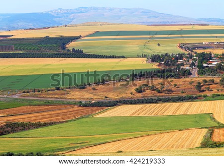 View on agriculture valley. Green fields,arable lands,olive plantations and wheat fields.Valley Arbel. In the background Galilee mountains. Agricultural theme. Harvesting. Galilee, Israel