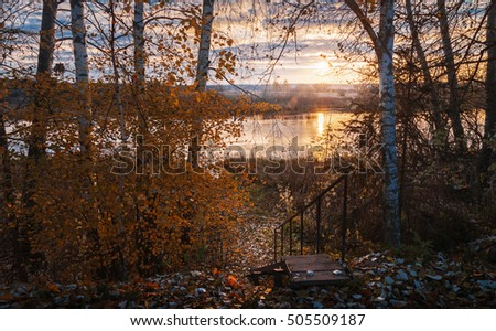 view on autumn landscape with birches