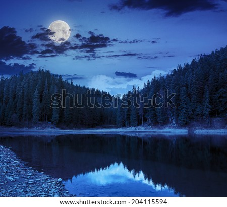 view on crystal clear lake with rocky shore near the pine forest at the foot of the  mountain at night in moon light - stock photo