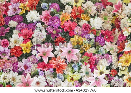 View on different colorful bright flowers from above. - stock photo