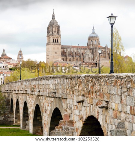 View on New Cathedral in Salamanca (Spain) - stock photo