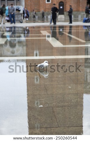 View on San Marco Square covered with water, Venice, Italy