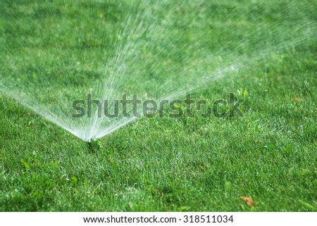 View on the sprinkler throwing out water drops over green grass  - stock photo