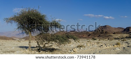 View on valley of Timna park, Israel
