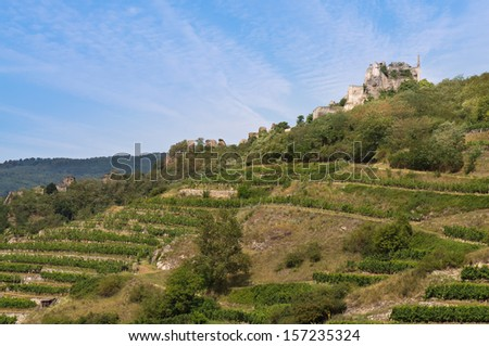 View over terraced vineyards to the ruins of Durnstein medieval castle, Wachau, Lower Austria - stock photo