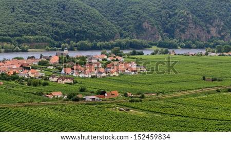View over vineyards and the village Unterloiben near Duernstein in Wachau to the river Danube and the forest of Dunkelsteiner Wald, Austria  - stock photo