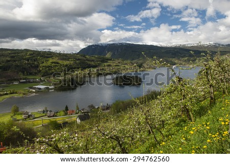 View overlooking Hardangerfjord near Ulvik in Norway - stock photo